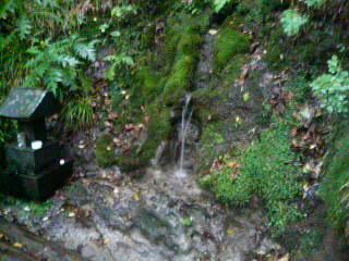 09栗駒山に登った後