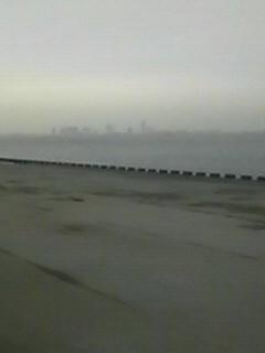 東京の海がほえる