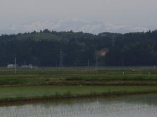 栗駒山の白い馬形