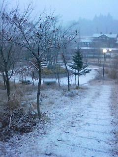 あっという間の雪景色