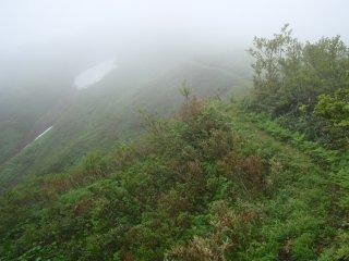 天狗森への道