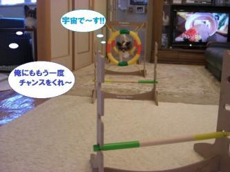 19-04_20100119190358.jpg