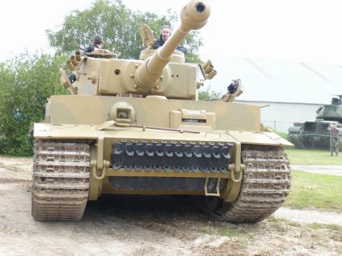 tiger1-131