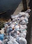 ゴミの海でもある