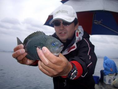 kawamurasann_convert_20090517191257.jpg