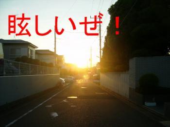 P8150105まぶ