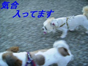 P7120111.jpg