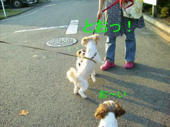 P7170128.jpg