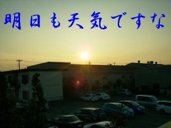 P7170138.jpg