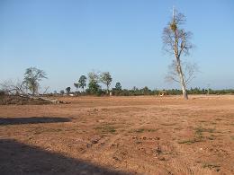 DSCF4376-10VUTA park1