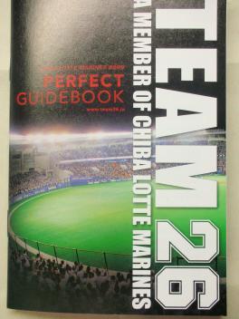 TEAM26パーフェクトガイド 2009