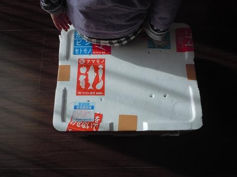 荷物が届いた20110304