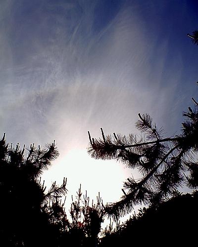 20080716.jpg
