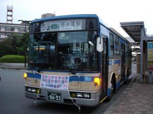DSC02020.jpg