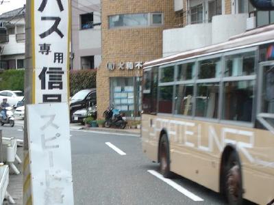 DSC02219_1.jpg