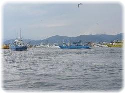 東京湾タチウオ釣り船
