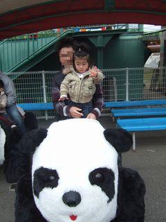 パンダに乗って