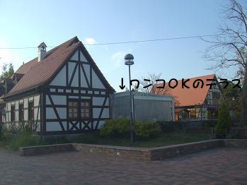 blog2_20081123230437.jpg