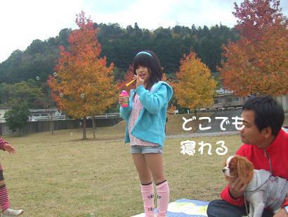 blog6_20081109220306.jpg