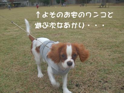 blog_20081109220759.jpg
