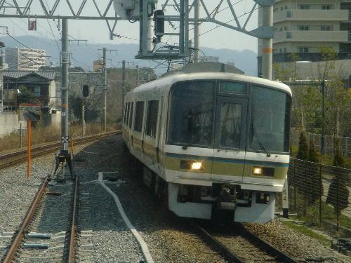 DSC08098s.jpg