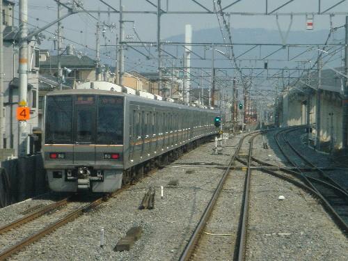 DSC08121s.jpg