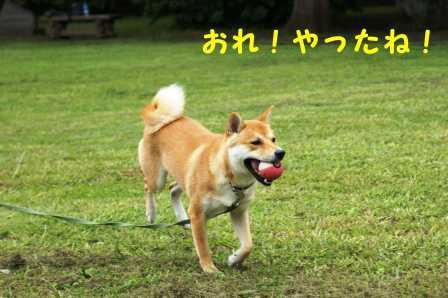 2008_06280252.jpg