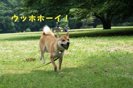 2008_07060146.jpg