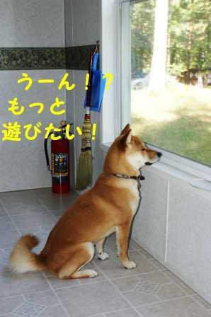 2008_07130084.jpg