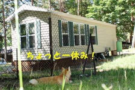 2008_07130150.jpg