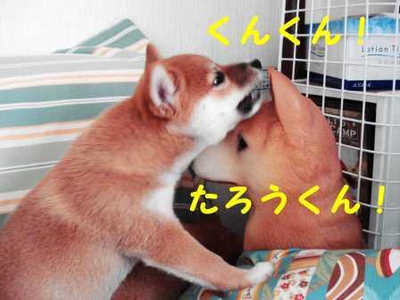 2008_07180064.jpg