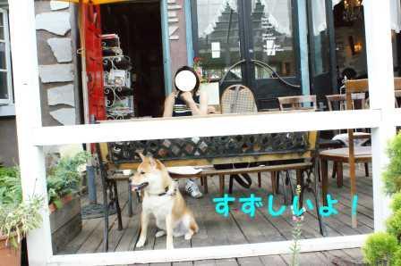 2008_07270111.jpg