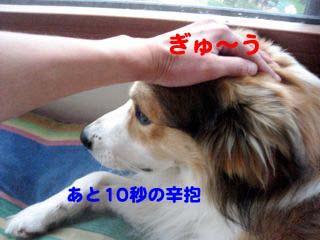 2008091105_convert_20080911153911.jpg