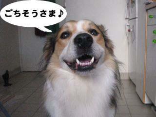 2008091212_convert_20080912052353.jpg