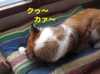 2008091603_convert_20080917064151.jpg