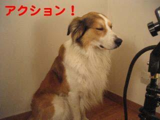 2008092406.jpg