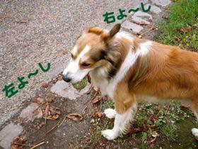 2008092410.jpg