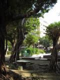 隣接する伊通公園