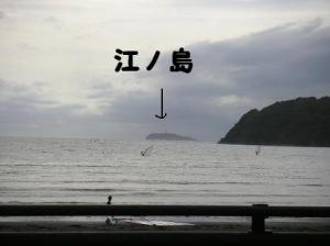 PICT0369.jpg
