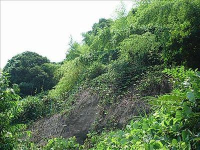 20080705_4_nankaku.jpg