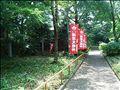 20080705_small_2maru.jpg
