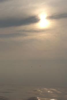 船より夕日