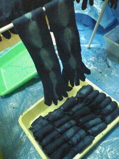 綿5本指靴下