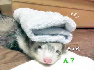 お風呂上りチック?(汗)