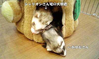 あゆむさんと大樹君の2ショット☆