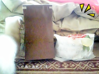 箱の中身☆
