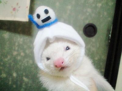 雪だるまのはるバージョン☆