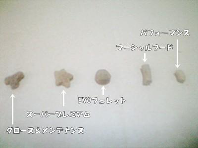 フードの形