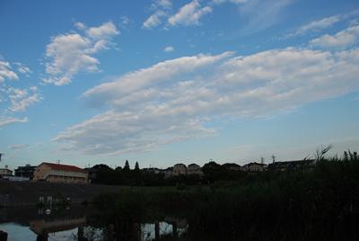 10-20080817.jpg
