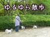 yuruyura.jpg